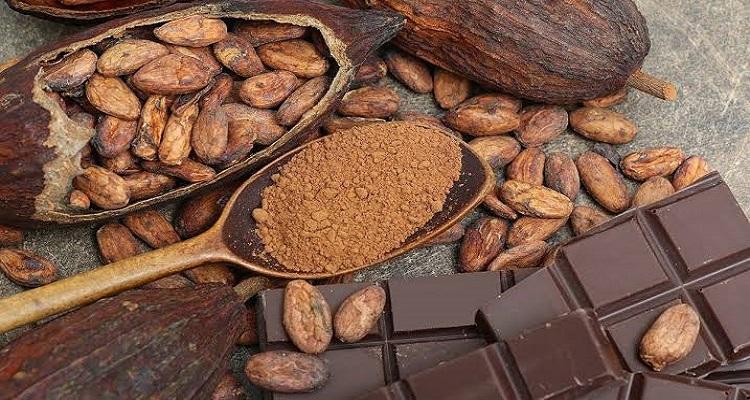 فوائد الكاكاو للجسم