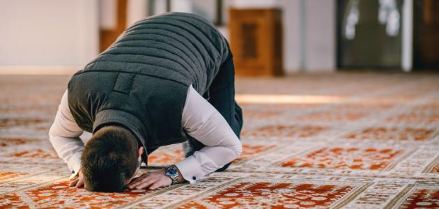 ايات قرانية عن الصلاة