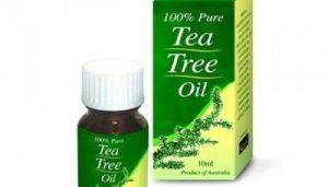 طرق لاستخدام زيت شجرة الشاي بديلا للكيماويات