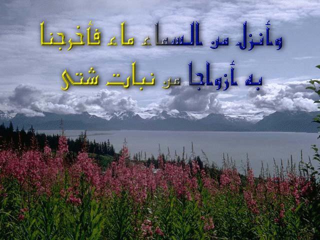 آيات قرآنية مكتوبة على مناظر طبيعية