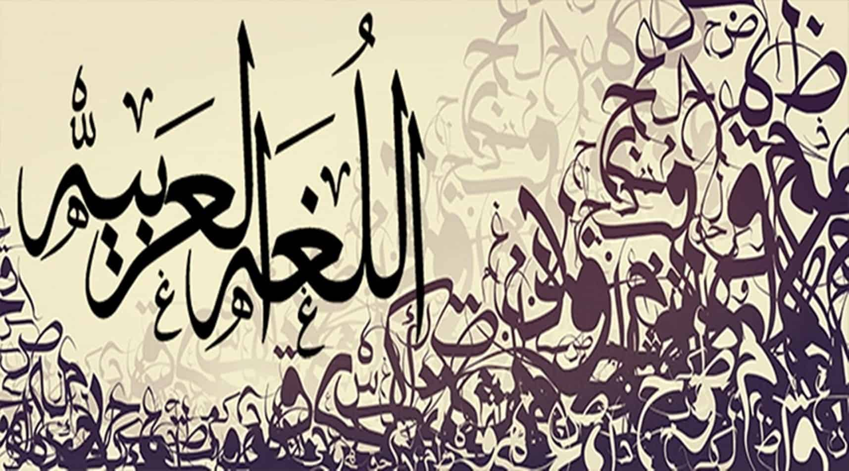 أحاديث عن اللغة العربية