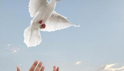 براجراف بالانجليزي عن السلام