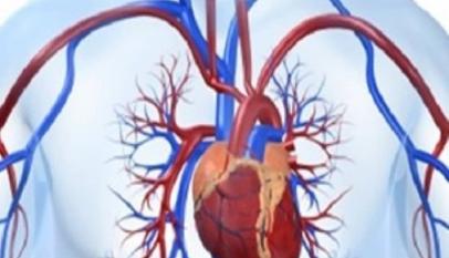 اعراض ارتفاع انزيمات القلب