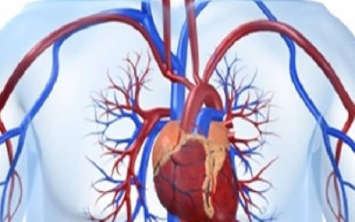 اعراض ارتخاء صمام القلب الجواب