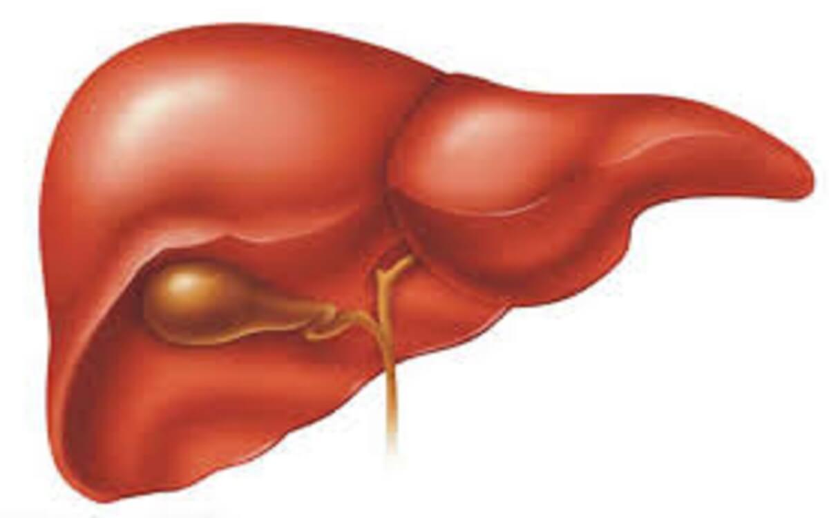 اعراض الاصابة بفيروس سي