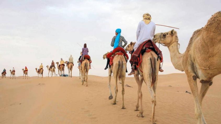 نكت عن البدو