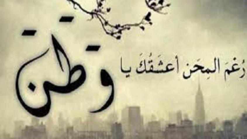 شعر بدوي عن حب الوطن