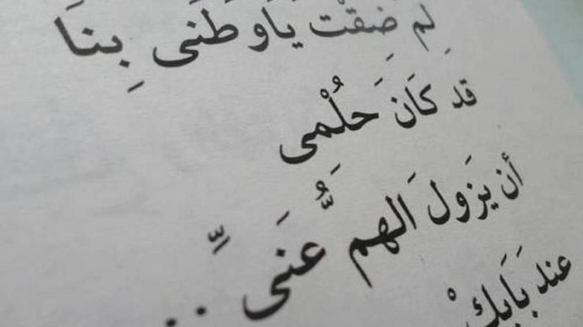 شعر عربي فصيح عن الوطن