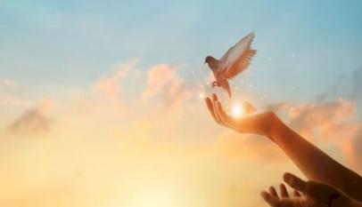 الفرق بين الاستغفار والتوبة