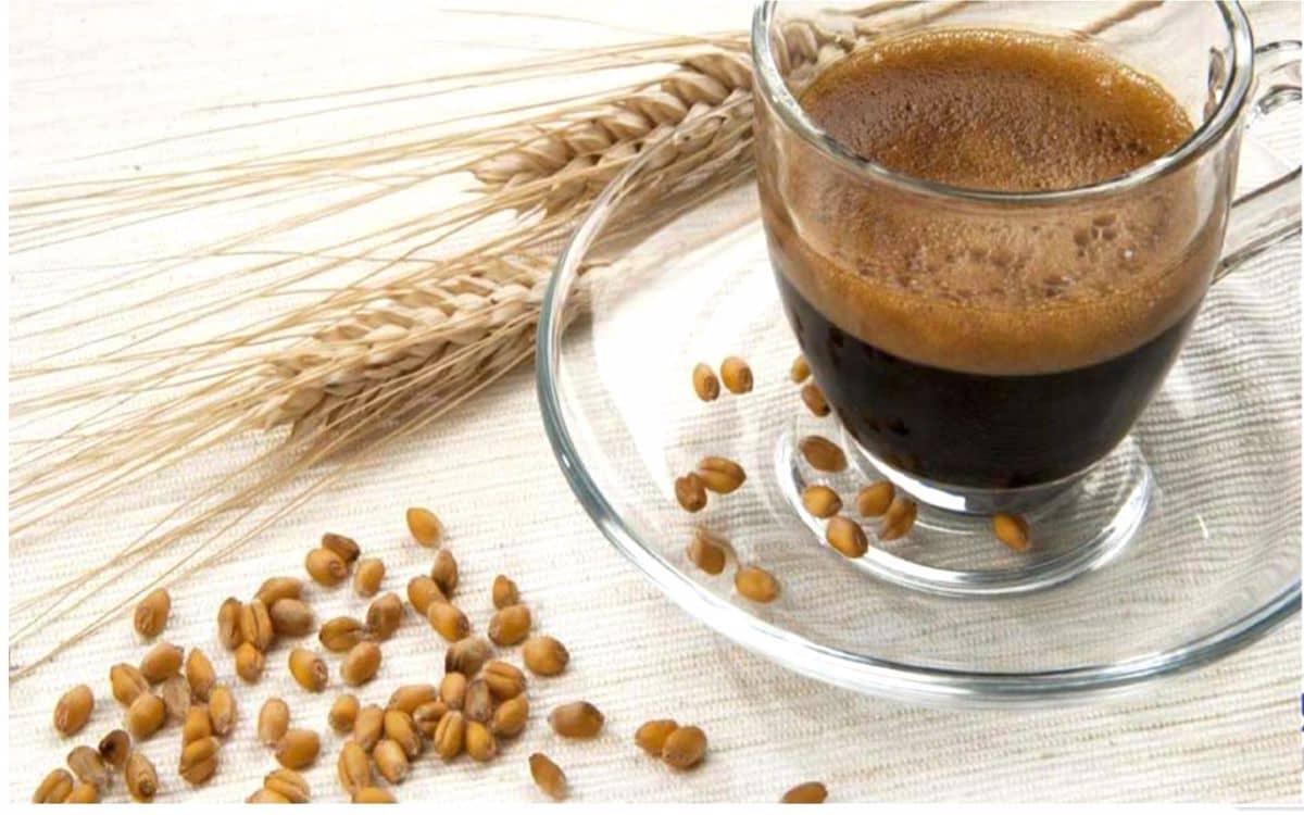 هل قهوة الشعير تنحف