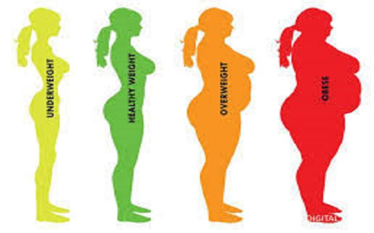 السعرات الحرارية في اليوم لانقاص الوزن