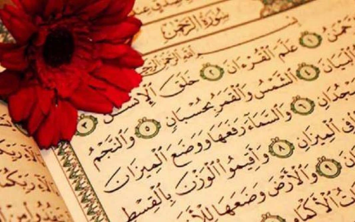 بحث عن سورة الرحمن